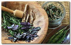 Herbs from chronic bronchitis