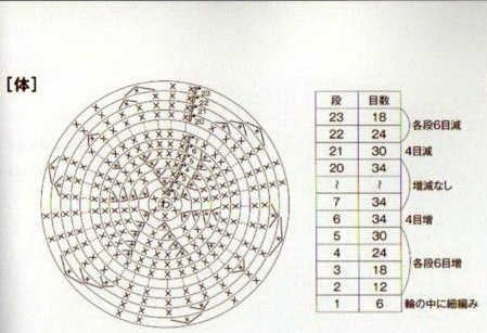 Схема туловища